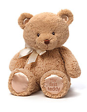 My 1st Teddy Stuffed Animal