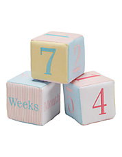 Baby Girls Milestone Blocks
