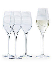 Fete Set of Four Champagne Glasses