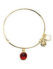 July Birthstone Charm Bangle