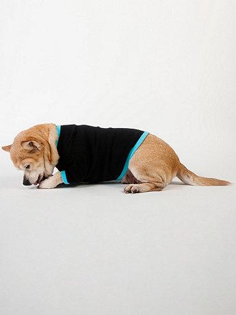 Black & Aqua Baby Rib Dog T