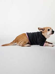 Asphalt & Pink Baby Rib Dog T
