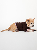 Brown & Pink Baby Rib Dog T