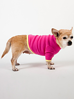 Fuchsia & Lemon Baby Rib Dog T