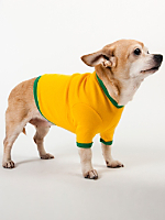 Gold & Kelly Green Baby Rib Dog T