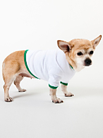 White & Kelly Green Baby Rib Dog T