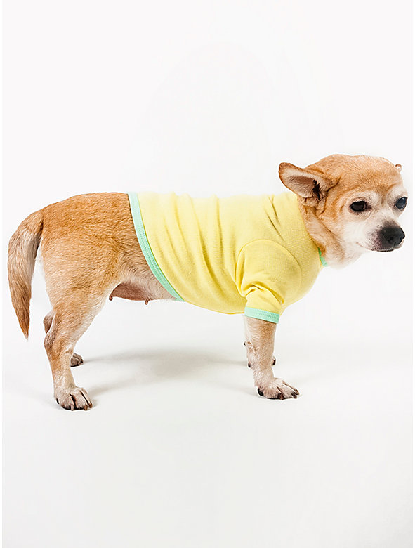 Lemon & Lime Baby Rib Dog T