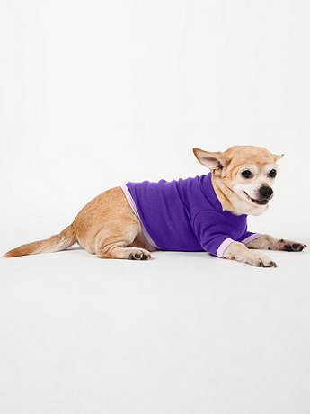 Purple & Lavender Baby Rib Dog T