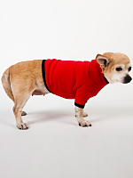 Red & Black Baby Rib Dog T
