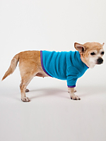 Teal & Purple Baby Rib Dog T