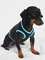 Black & Aqua California Fleece Dog Vest