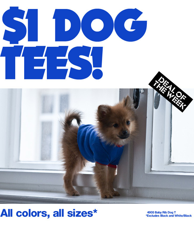 Deal of the Week: $1 Dog Tees!