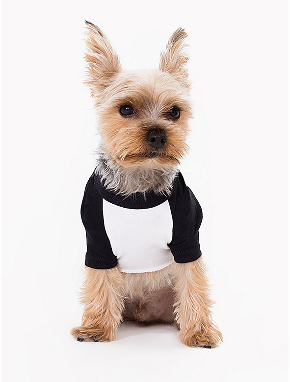 White & Black Poly-Cotton Dog Raglan