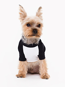 White & Black Poly-Cotton Dog Raglan