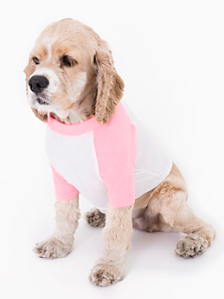 White & Neon Heather Pink Poly-Cotton Dog Raglan