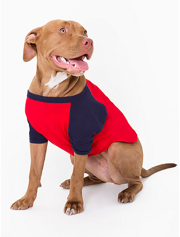 Navy & Red Poly-Cotton Dog Raglan