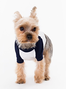 White & Navy Poly-Cotton Dog Raglan