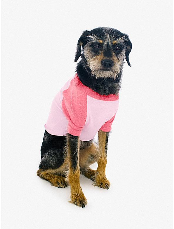 50/50 3/4 Sleeve Dog Raglan