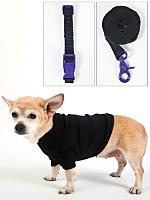 Dog Leash, Collar & T-Shirt (3-Pack)