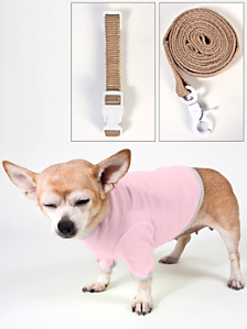 Dog Leash, Collar & T-Shirt (3-Pack)