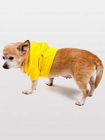 Sunshine Flex Fleece Dog Zip Hoodie