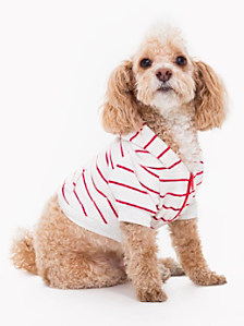 Striped Flex Fleece Dog Zip Hoodie