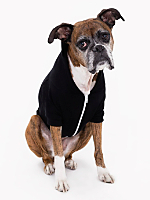 Black Flex Fleece Dog Zip Hoodie (XL-2XL)