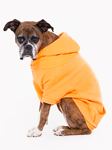 Neon Orange Flex Fleece Dog Zip Hoodie (XL-2XL)