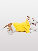 Sunshine Flex Fleece Dog Zip Hoodie (XL-2XL)