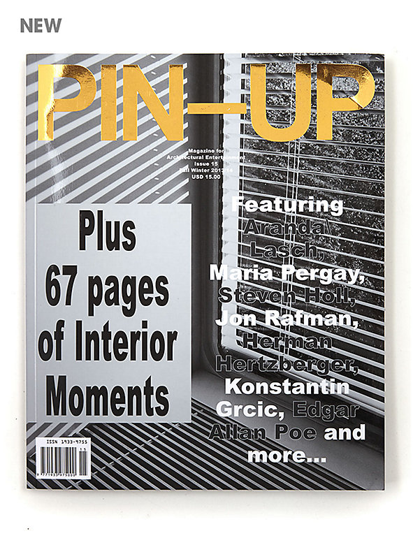 Pin-Up Issue #15