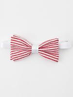 Unisex Seersucker Bow Tie