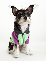 Orchid Grey Neon Green Flex Fleece Color Block Dog Hoodie