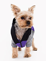Purple Black Peppered Grey Flex Fleece Color Block Dog Hoodie