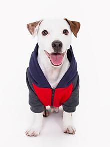 Red Navy Grey Flex Fleece Color Block Dog Hoodie