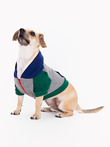 Zinc Lapis Green Flex Fleece Color Block Dog Hoodie