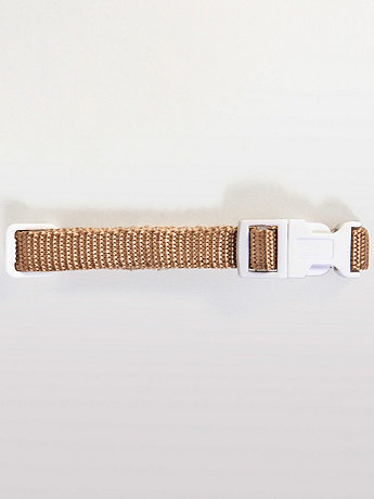 Light Beige Dog Collar