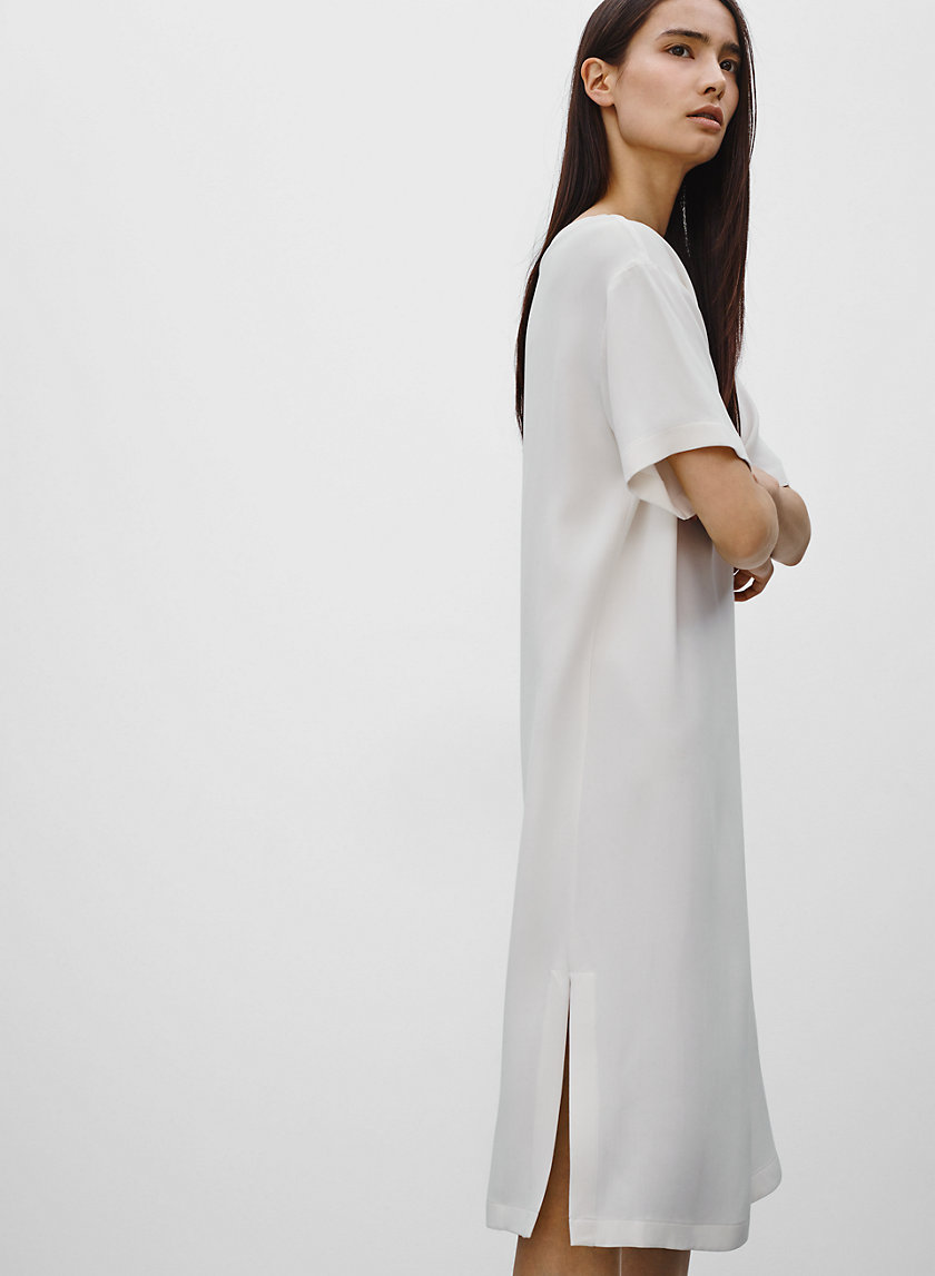 Babaton THORNTON DRESS | Aritzia
