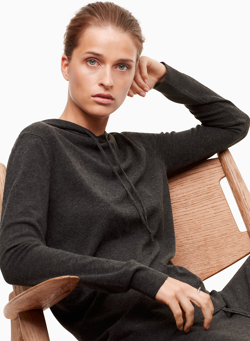 The Group by Babaton GINSBURG HOODIE | Aritzia