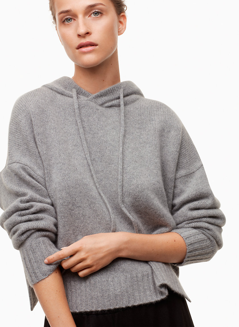 The Group by Babaton PAYETTE HOODIE | Aritzia