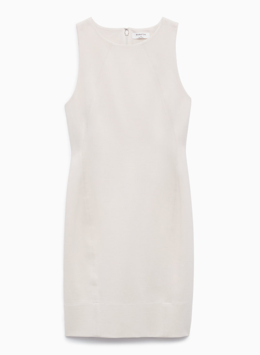Babaton MIGUEL DRESS | Aritzia