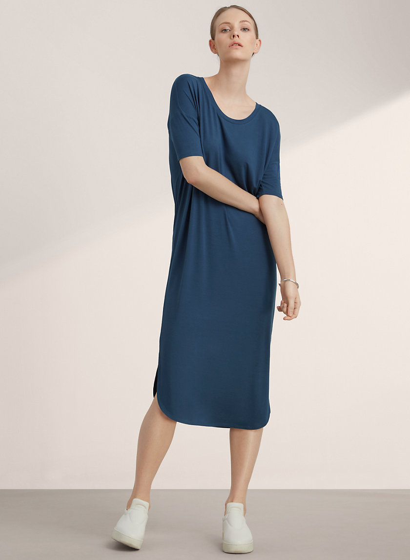 Babaton JARED DRESS | Aritzia