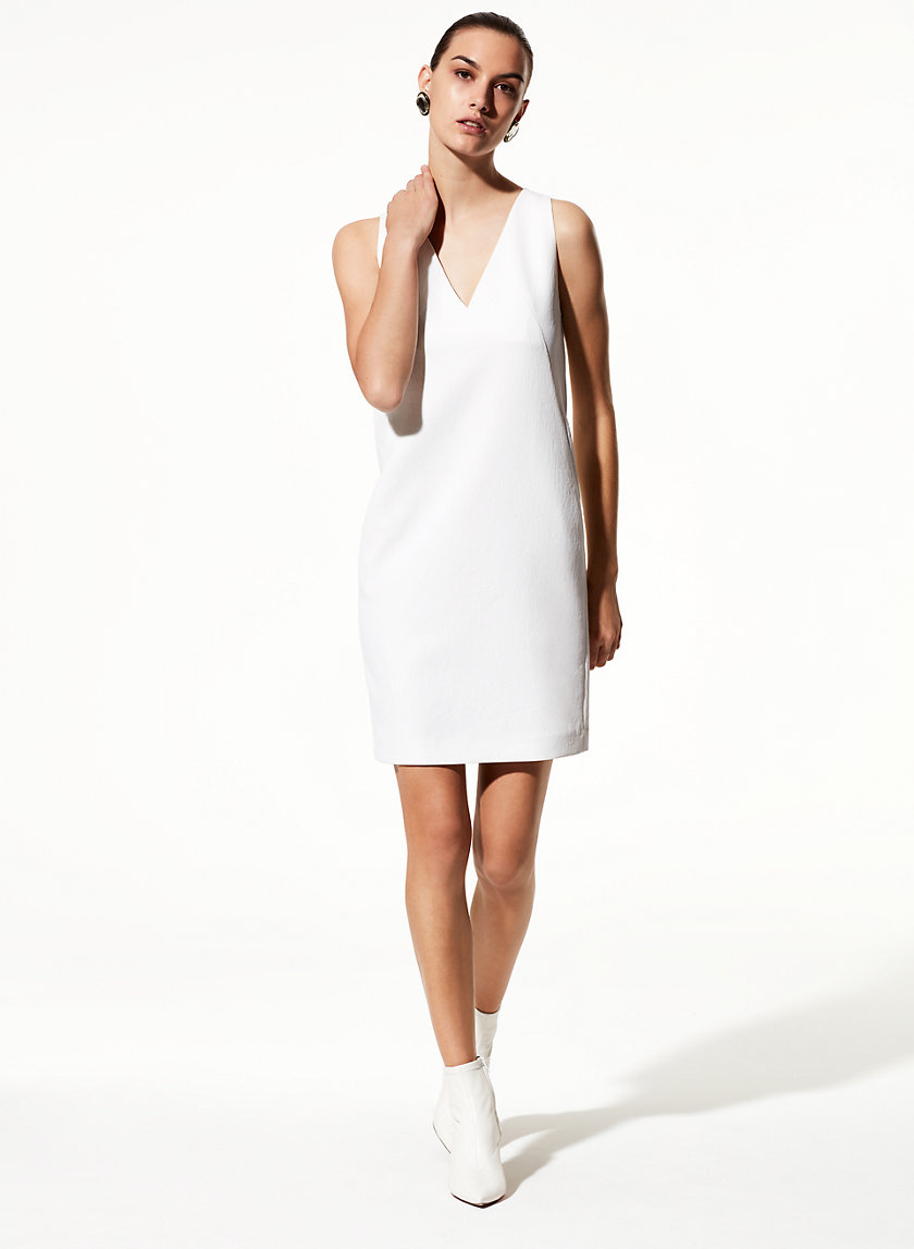 Babaton LOUIE DRESS | Aritzia