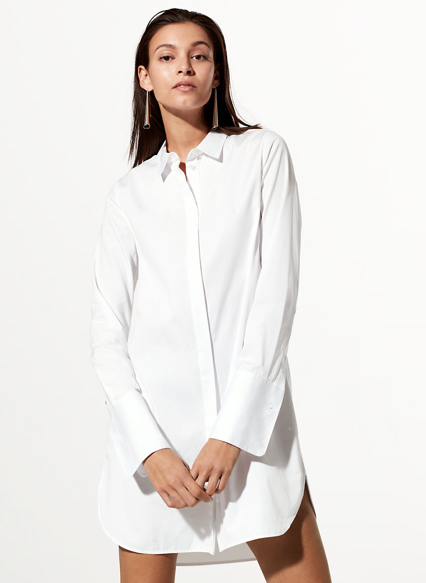 Babaton CARLETON DRESS | Aritzia