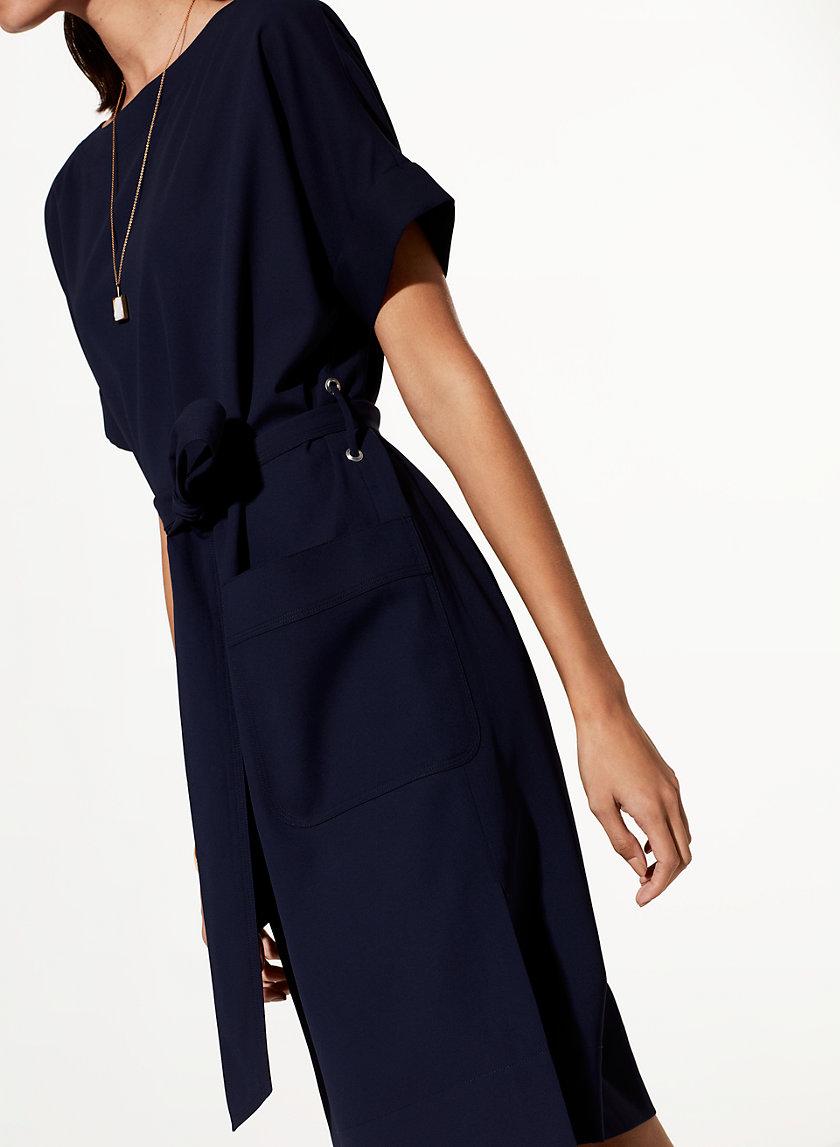 Babaton ALBIN DRESS | Aritzia