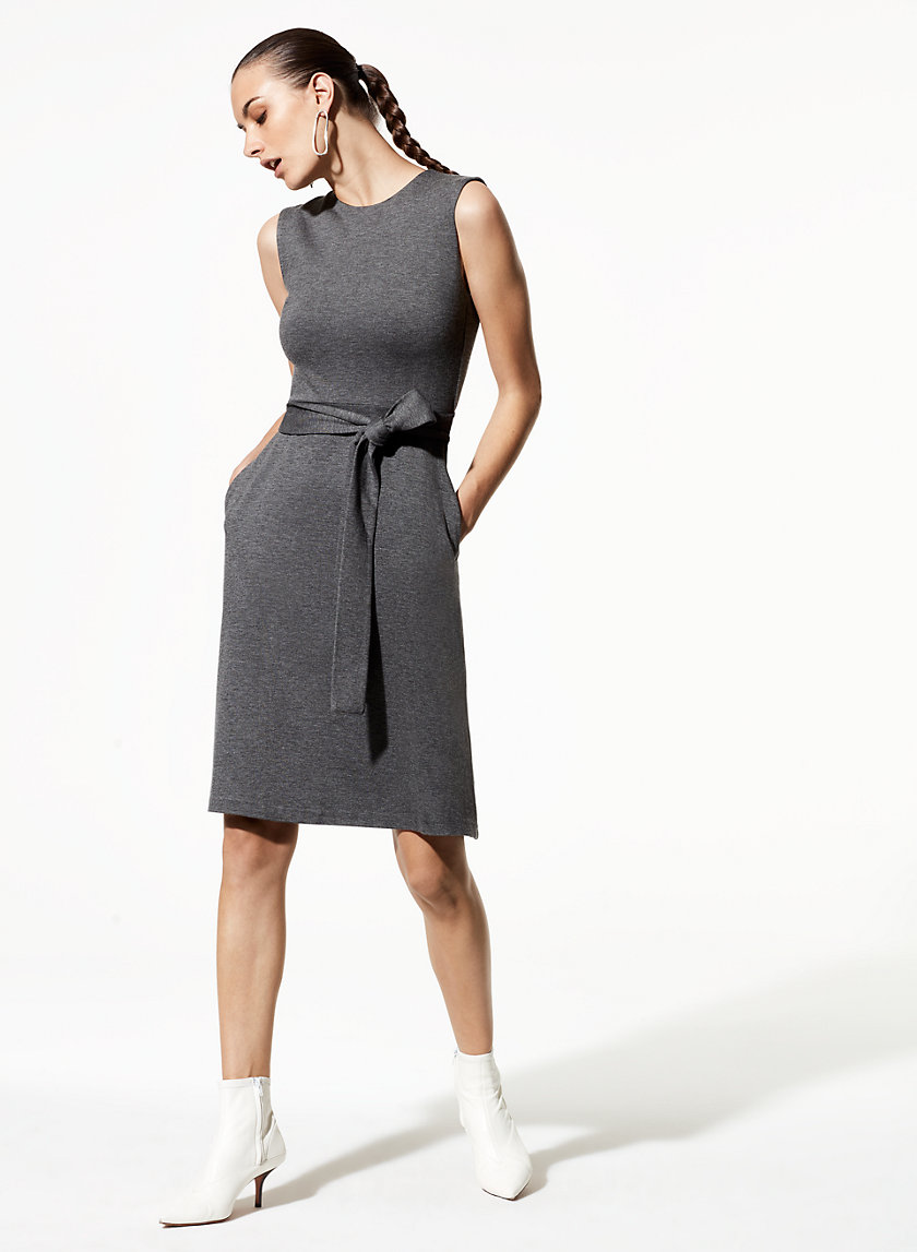 Babaton DIRK DRESS | Aritzia