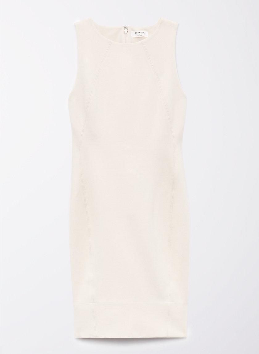 Babaton MIGUEL DRESS | Aritzia