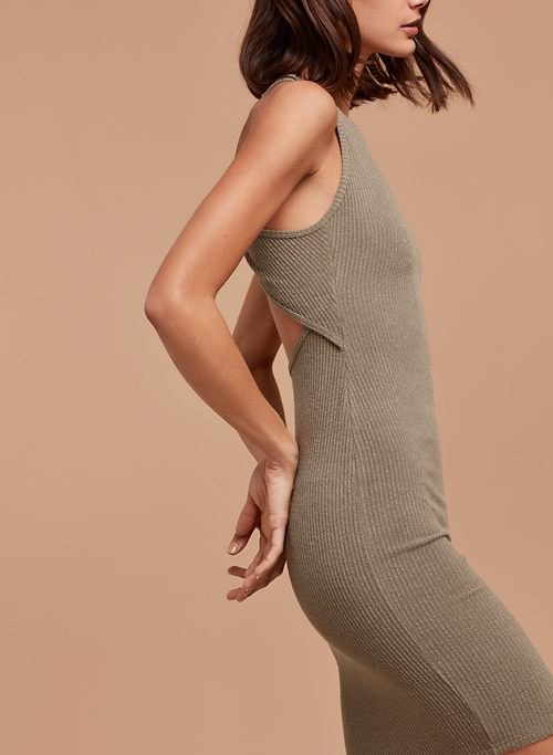 BELLEORAM DRESS | Aritzia