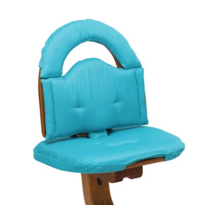 Turquoise Chair Cushions