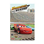 Disney®/Pixar Cars Burning Up the Track Window Poster