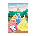 Disney® Princess Garden Window Poster